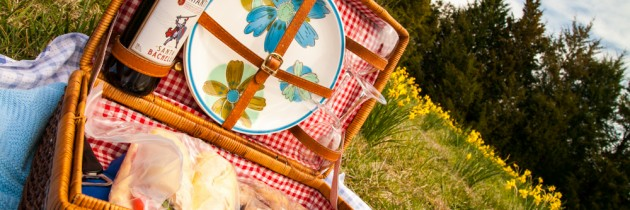 A Picnic in the Daffodil's